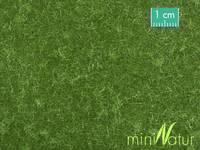 Terepszőnyeg Rövid fű Mininatur 710-22S Mininatur