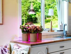 Venso Növény lámpa 130 mm 230 V E27 18 W Reflektor 1 db Venso
