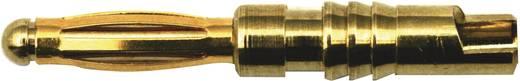 Aranyozott dugó/hüvely 2 mm