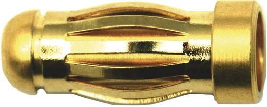 Modellcraft aranyozott dugó/hüvely 4 mm, 1 pár