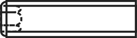Toolcraft belső kulcsnyílású hernyócsavar, M2 x 10 mm, DIN 916, fekete, 20 db 222520