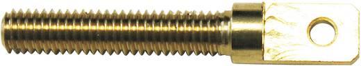Szemes csavar M3 1.65 mm Sárgaréz
