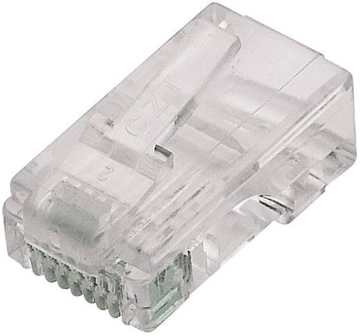 RJ45 moduláris dugó Pólusszám: 8P8C