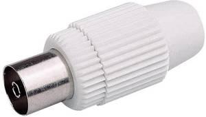 Koax aljzat műanyag egyenes Renkforce 0800302 Renkforce