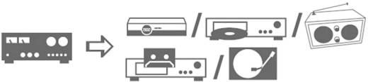 RCA audio kábel, 2x RCA dugó - 2x RCA dugó, 0,5 m, aranyozott, kék, SpeaKa Professional 325036
