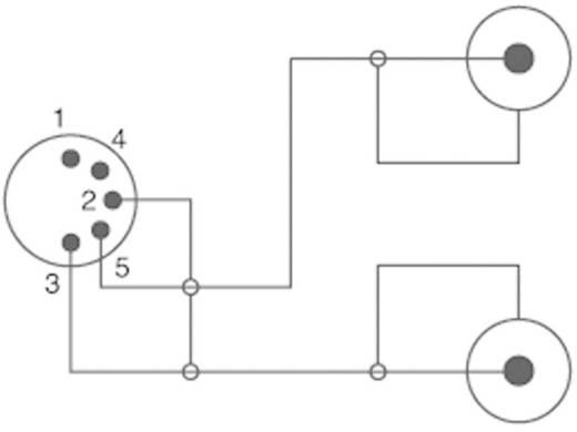 RCA - DIN audio kábel, 2x RCA dugó - 1x 5 pól. DIN dugó, 1,5 m, fekete, SpeaKa Professional 325077