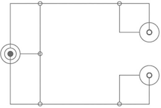 Y kábel, 6,3 jack dugó/2 x RCA aljzat, 0,2 m, fekete, SpeaKa Professional 50096
