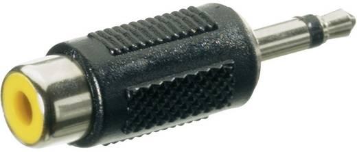 Monó 3,5 jack dugó/RCA aljzat átalakító adapter, fekete, SpeaKa Professional 50127