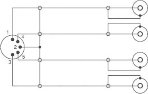 Audio kábel, 5 pólusú DIN dugó/4 x RCA aljzat, 0,2 m, fekete, SpeaKa Professional 50100