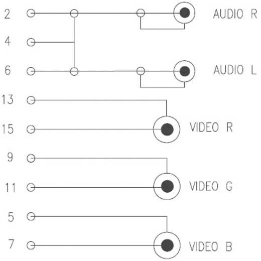RGB kábel SCART dugó/3 x RCA dugó, 2,5 m, fekete, SpeaKa Professional 50253