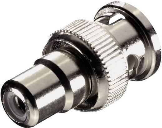 BNC - RCA átalakító adapter, 1x BNC dugó - 1x RCA aljzat, ezüst, SpeaKa Professional
