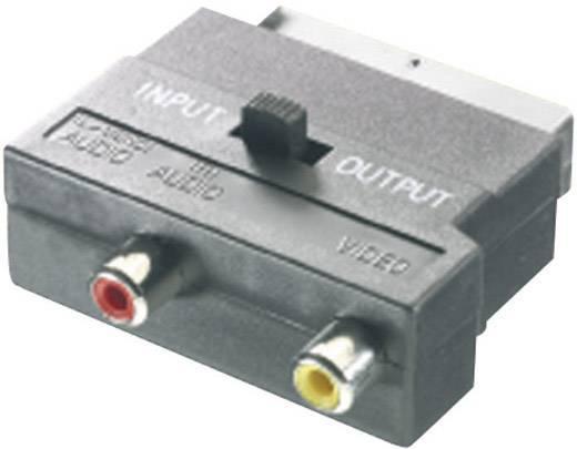 SCART - RCA átalakító adapter átkapcsolóval, 1x SCART dugó - 2x RCA aljzat, fekete, SpeaKa Professional