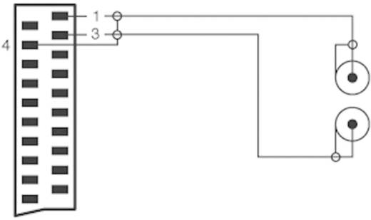 SCART dugó/2 x RCA dugó kábel, 2 m, fekete, SpeaKa Professional 50172