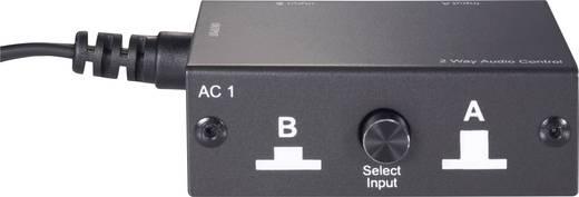 RCA Audio átkapcsoló, switch 2bemenet, 1kimenet SpeaKa AC1