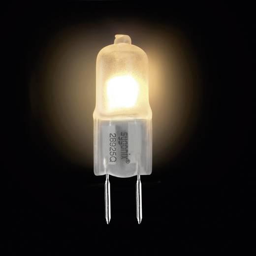 Halogén izzó G6.35 35W=42W SATIN melegfehér Sygonix Eco
