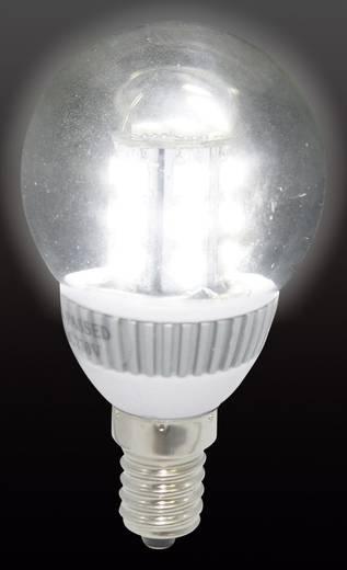 LED-es izzó E14 2.5 W= 25 W hidegfehér Conrad