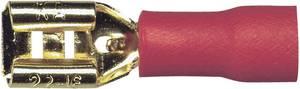10 részes készlet 1.5 mm² 4.8 mm Sinuslive Aranyozott (FS 4,8-1,5 FLACHSTECKER, 10 STÜCK) Sinuslive