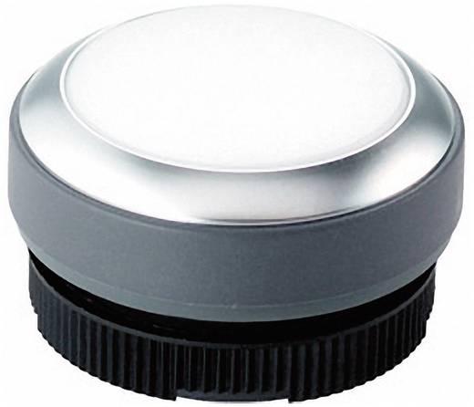 Nyomógomb, megvilágítható fehér, RAFI RAFIX 22 FS+ 1.30.270.021/2200