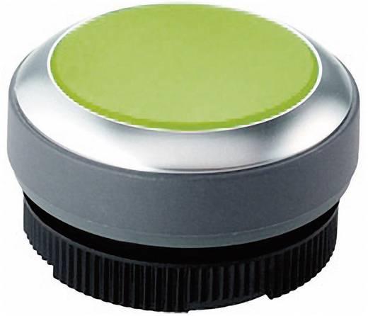 Nyomógomb, megvilágítható zöld, RAFI RAFIX 22 FS+ 1.30.270.021/2500