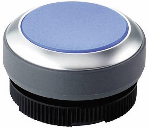 Nyomógomb, megvilágítható kék, RAFI RAFIX 22 FS+ 1.30.270.021/2600