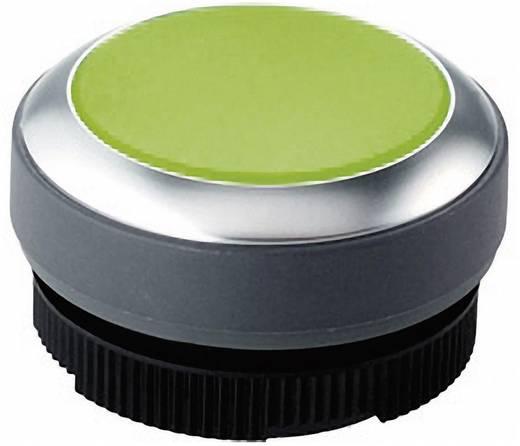 Megvilágítható nyomókapcsoló ház, búra, zöld színű RAFI RAFIX 22 FS+ 1.30.270.031/2500