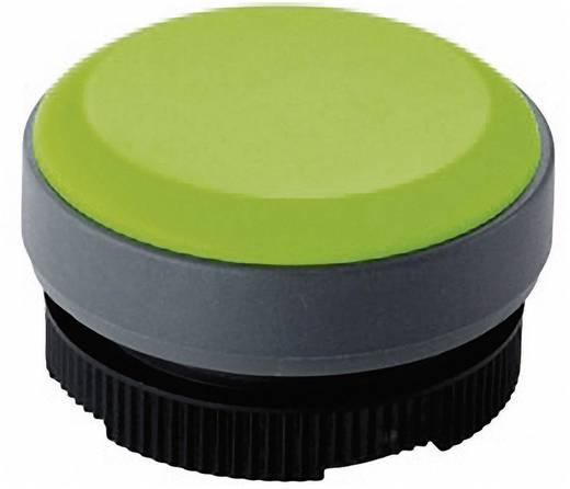 Világító előtét, zöld, RAFI RAFIX 22 FS+ 1.74.508.001/2500
