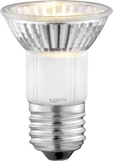 Nagyfeszültségű halogén izzó 72 mm sygonix 230 V E27 50 W, melegfehér, EEK: D, dimmelhető 2 db