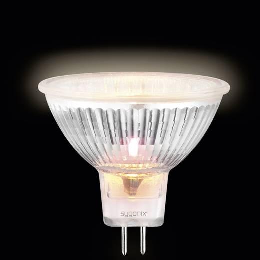 Nagyfeszültségű halogén izzó 49 mm sygonix 12 V GU5.3 50 W, melegfehér, EEK: C, dimmelhető