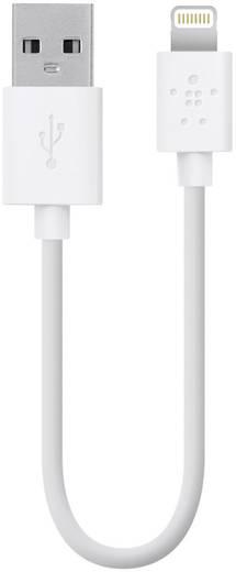 Apple töltőkábel iPhone iPad iPod adatkábel [1x USB 2.0 dugó A - 1x Apple Lightning dugó] 0.15m fehér Belkin 396680