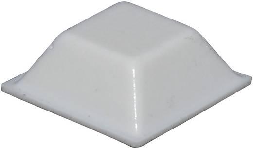 Öntapadós műszerláb, TOOLCRAFT PD2205W, 20,5 x 20,5 x 7,5 mm, Fehér