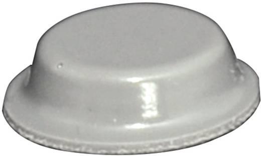 TOOLCRAFT Elasztikus puffer, öntapadó PD2125G (Ø x Ma) 12.7 mm x 3.5 mm szürke