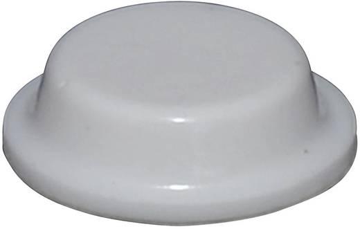 TOOLCRAFT Elasztikus puffer, öntapadó PD2125W (Ø x Ma) 12.7 mm x 3.5 mm Fehér