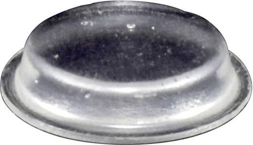 TOOLCRAFT Elasztikus puffer, öntapadó PD2024C (Ø x Ma) 19 mm x 4 mm átlátszó