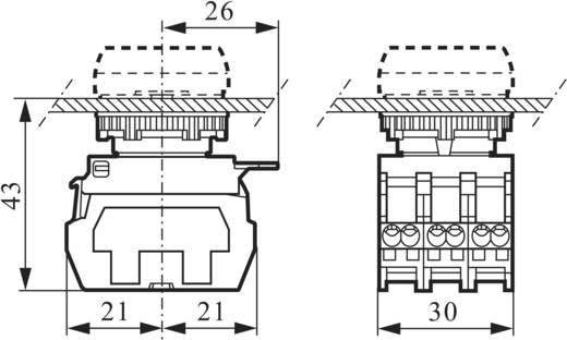 3 részes adapter érintkező elemmel, 600 V/10 A, rugós csatlakozóval, BACO 333ER11