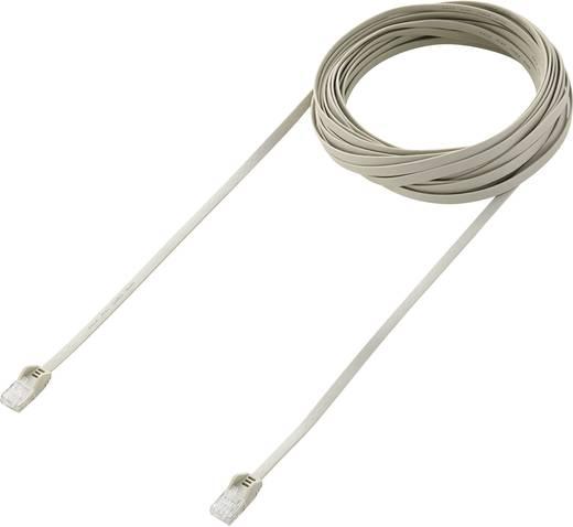 RJ45-ös patch kábel, hálózati LAN kábel, CAT 6 U/UTP [1x RJ45 dugó - 1x RJ45 dugó] 10 m fehér, Renkforce