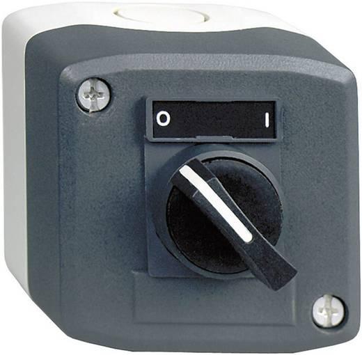 Kapcsoló házban, 2 állású, sötétszürke/világosszürke, Schneider Electric Harmony XALD134