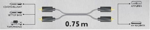 RCA audio kábel, 2x RCA dugó - 2x RCA dugó, 0,75 m, aranyozott, fekete, Sound & Image