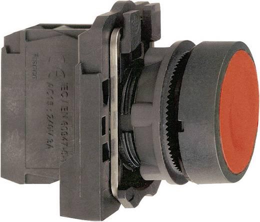 Nyomógomb, lapos, fekete, Schneider Electric Harmony XB5AA21