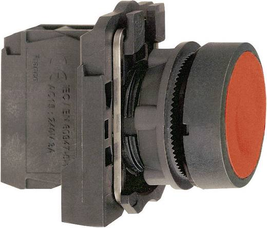 Nyomógomb, lapos, zöld, Schneider Electric Harmony XB5AA31