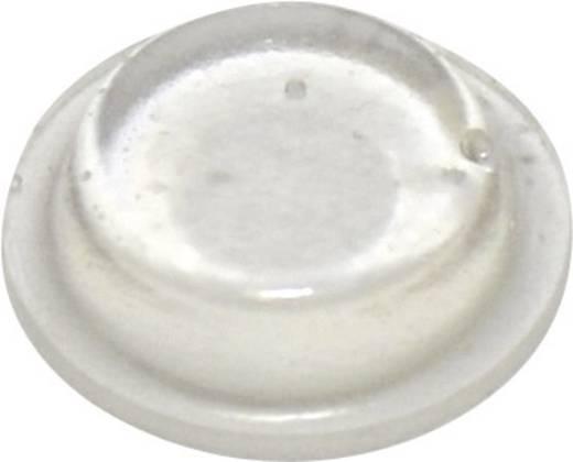TOOLCRAFT Készülékláb, öntapadó PD2125C (Ø x Ma) 12.7 mm x 3.5 mm PU átlátszó