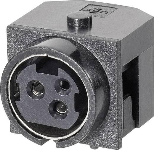 Hálózati csatlakozó alj, beépíthető, pólusszám: 3, fekete, 7,5 A, BKL Electronic 0211003