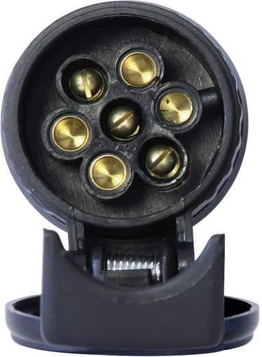 DINO Adapter 13-ról 7 pólusra