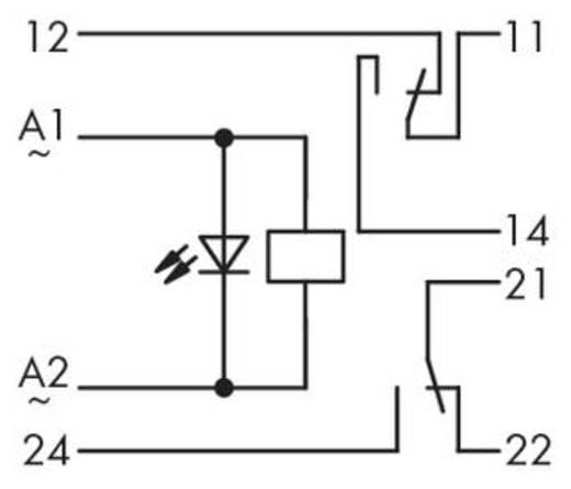 Relé modul 2 váltó 250 V, WAGO 286-516