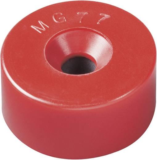 Mágnes rendszer Ø 22,5 x 11 mm, anyag: BaO, 0,365 T, Elobau 300770