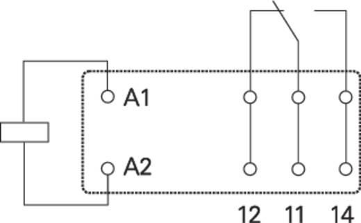 Relé panel, relé nélkül, REL-PCB1 Conrad REL-PCB1 0 4 - 32 V/DC 1 váltó 16 A/250 V/AC