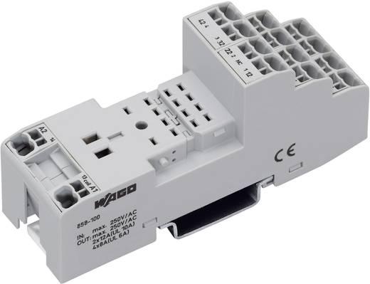 Csatlakozó aljzat ipari reléhez 2/4 váltóérintkező 4 x 8 A/2 x 12 A, WAGO 858-100