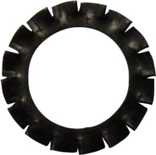 Toolcraft rugóacél fogazott alátét, külső fogazású, M2, DIN 6798, 100 db