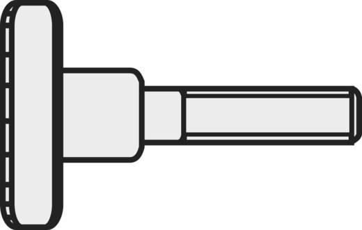 Toolcraft kézi szorítású galvanizált acél csavar M3 x 6 mm, DIN 464, 10 db 521859