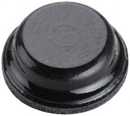 Készülék láb Öntapadó, Kerek Fekete (Ø x Ma) 8 mm x 2.8 mm<