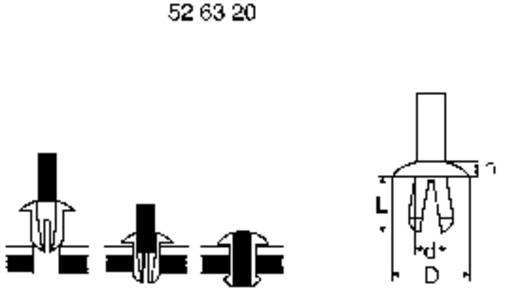 PB Fastener Szegecsek - Rivets (d x D x L x h) 3.5 x 8 x 7 x 2 Lemezméret 2.0 - 5.0 mm Műanyag Natúr